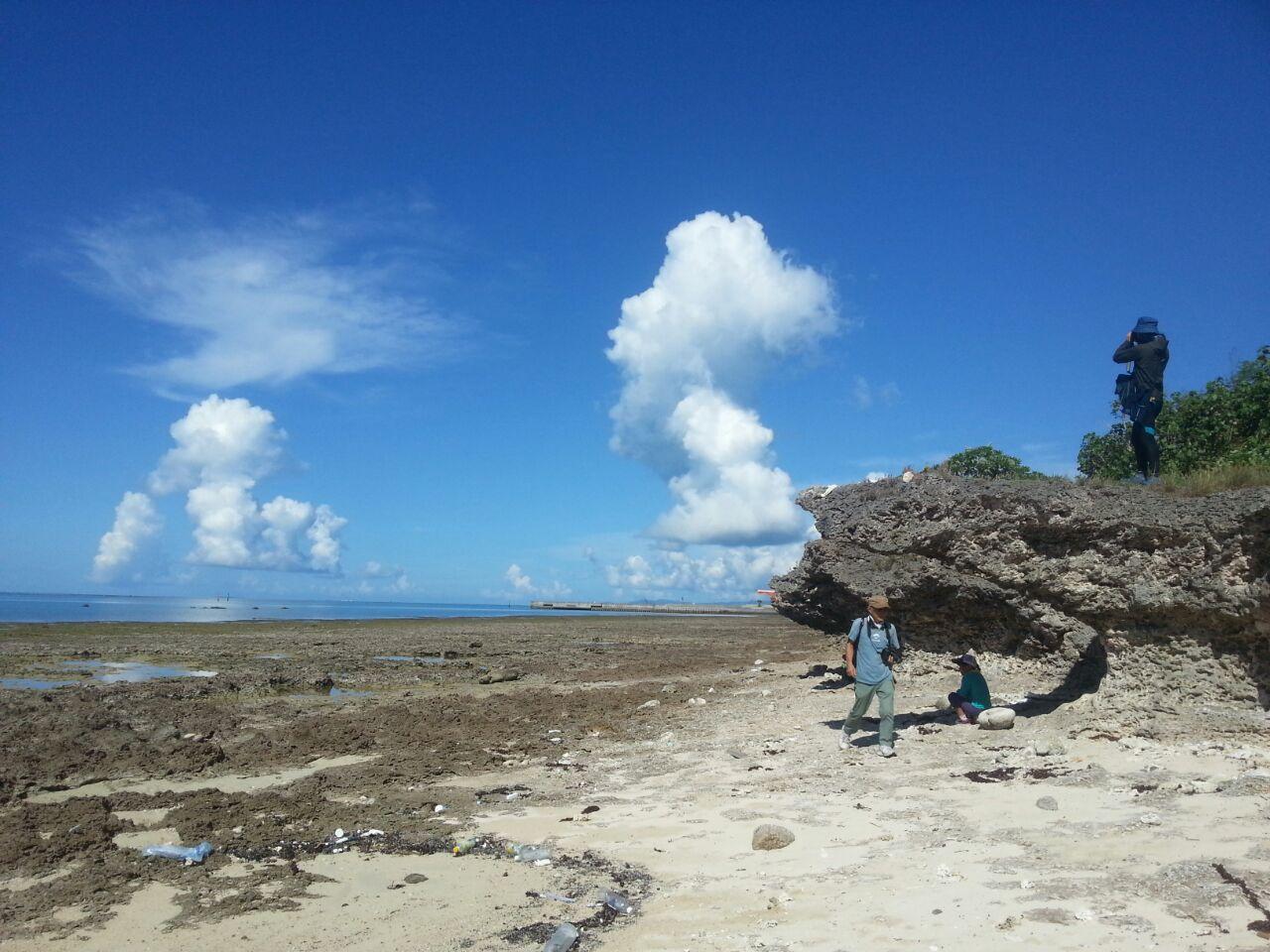 해변에서 사진 찍는 한톨.jpg