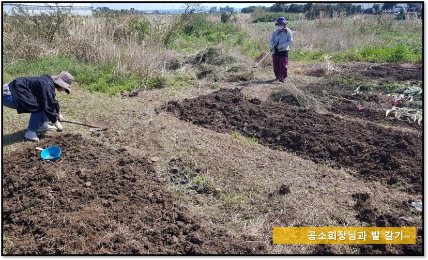 [꾸미기]밭갈기.jpg