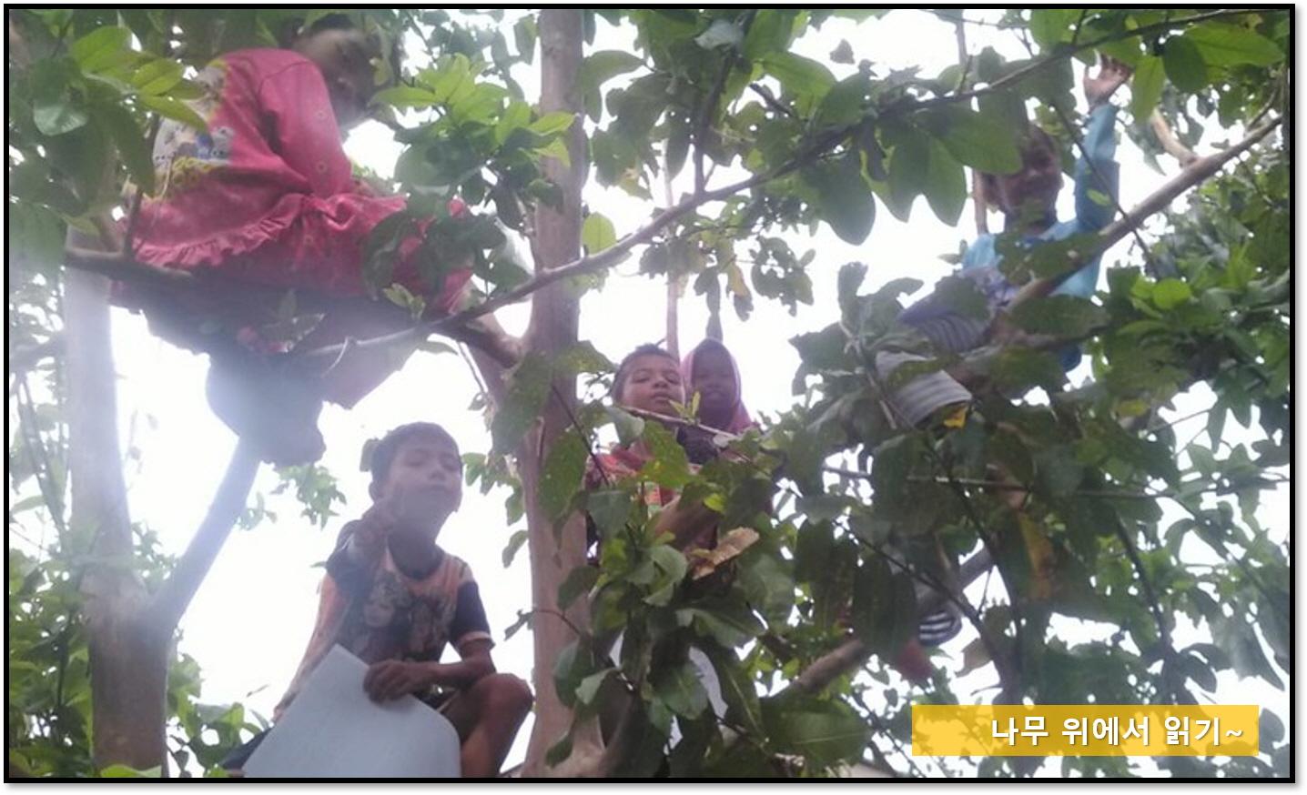 [꾸미기]나무 위에서 읽기.jpg